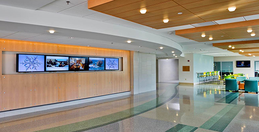 Physical and Health Sciences lobby