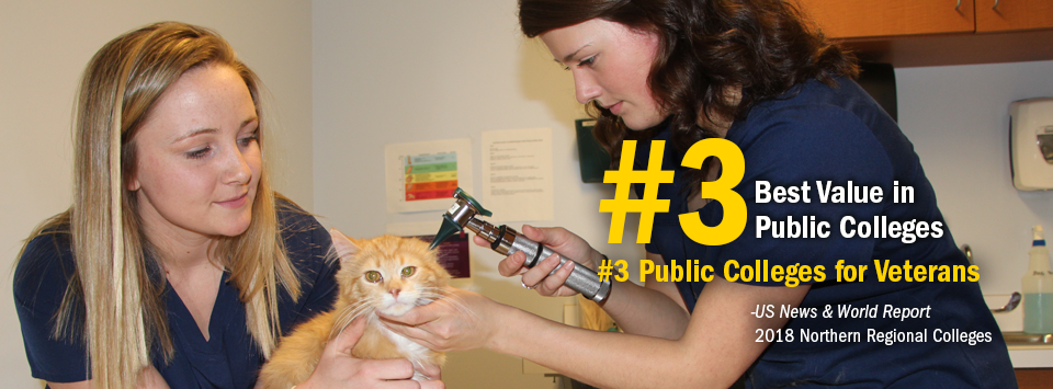 #3 Best Value in Public Colleges. #3 Public Colleges for Veterans. - US News & World Report, 2018 Northern Regional Colleges. Image of two Vet Tech students examining an orange cat's ear.