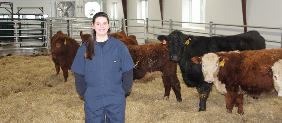 student standing in front of cattle in a barn