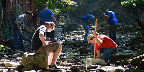 students in a creek looking at rocks