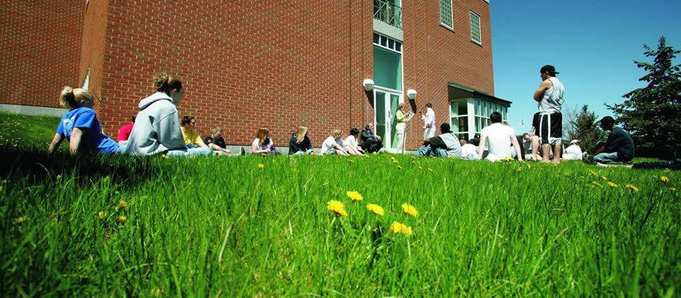 students sitting in the grass during a class outside