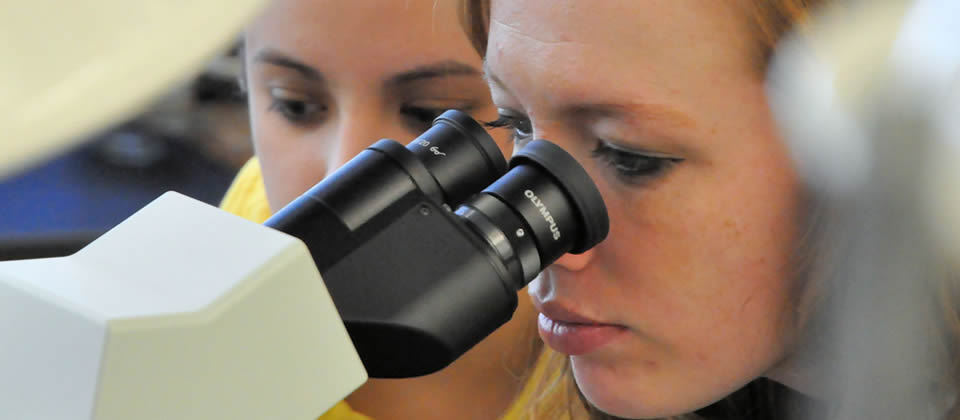 female student looking into a microscope