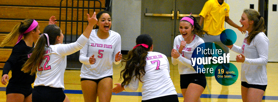 Picture yourself here. 19 sports. One Team.  Image of volleyball team celebrating after a score during the dig pink cancer awareness game.