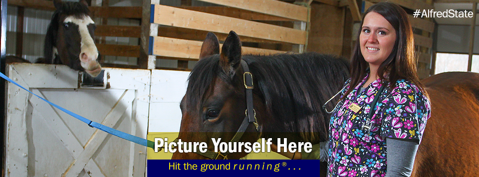 Female Vet Tech student pose for photo in the horse barn. Picture Yourself Here, Hit the ground running. #AlfredState
