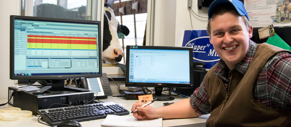 student sitting at computer with cow in window