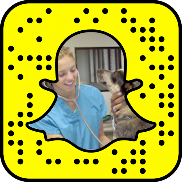 Snapcode linking to Agriculture & Veterinary Technology web page