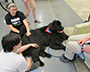 """Brody,"" a Newfoundland dog with 2 students"