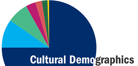 Color pie chart showing cultural demographics