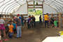 Area first- and second-graders tour the Alfred State Farm's calf barn Sept. 17 during Kiddie Ag Day