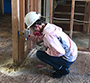 student wearing a white hard helmet prepares studs for mold sanitation