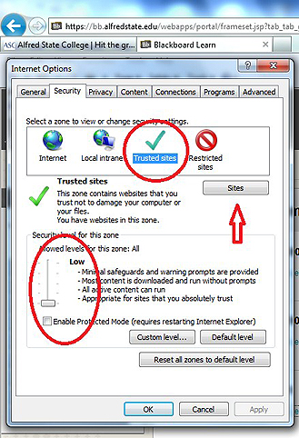 Internet Explorer trusted site screen shot