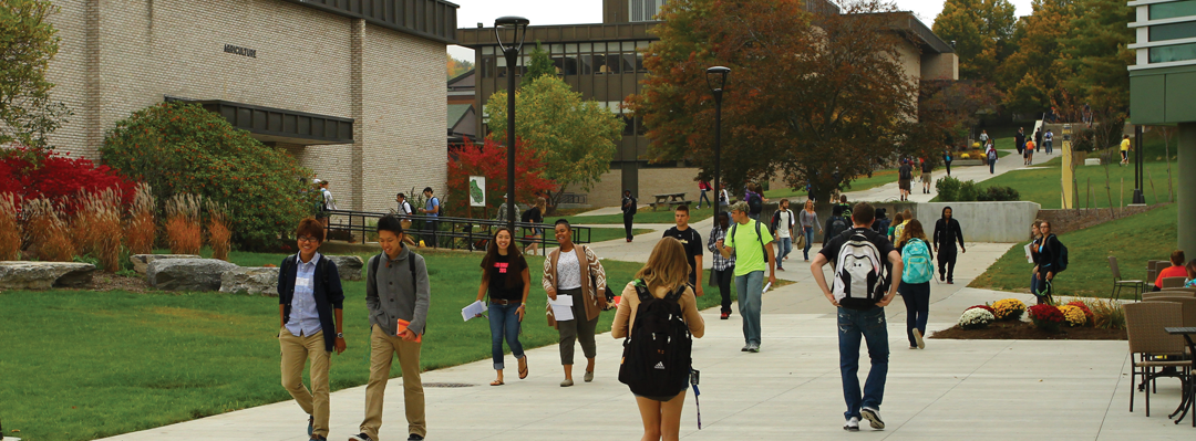 several students walking thru the middle of campus